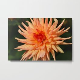 A Radiant Beauty Metal Print