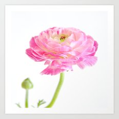 Perfectly Pink Art Print
