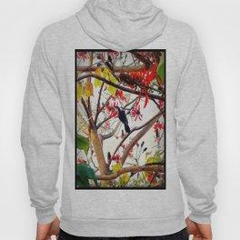 Bird in Coral Tree Hoody