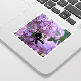 Busy Bee in Lilac Art Photography Sticker