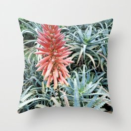 17    Plants Photography   200630   Throw Pillow