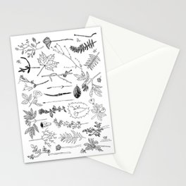 Botanical Drawings by young school kids artists, profits are donated to The Ivy Montessori School Stationery Cards
