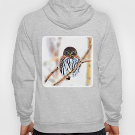 Winter Owl Watercolor Hoody