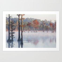 Adams Mill Pond 36 Art Print