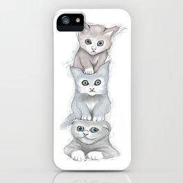 Cat Totem iPhone Case