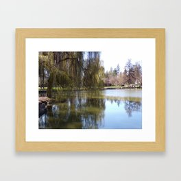 Old Weeping Willow Tree Standing Next To Pond Framed Art Print