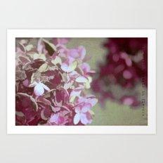 Hydrangeas No. 4 Art Print