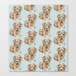 Schnoodle Pups Canvas Print