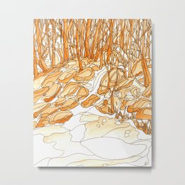 Eno River 35 Metal Print