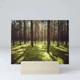 FOREST - Landscape and Nature Photography Mini Art Print