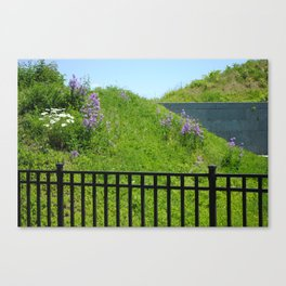 Fielded Canvas Print