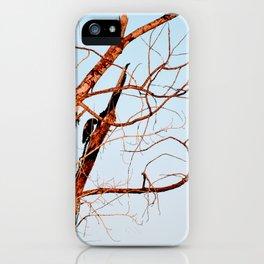 High Desert Lookout iPhone Case