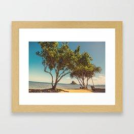 Hawaiian landscape Framed Art Print