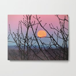 Black Friday Full Moon (1) Metal Print