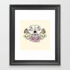 Cat Skull Framed Art Print