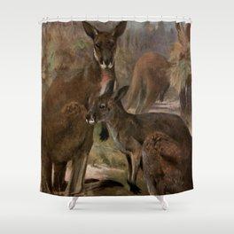 Vintage Kangaroo Painting (1909) Shower Curtain