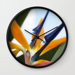 Bird of Paradise - Hawaii Wall Clock