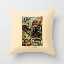 Vintage New World Monkeys Throw Pillow