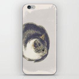 Fat Cat iPhone Skin