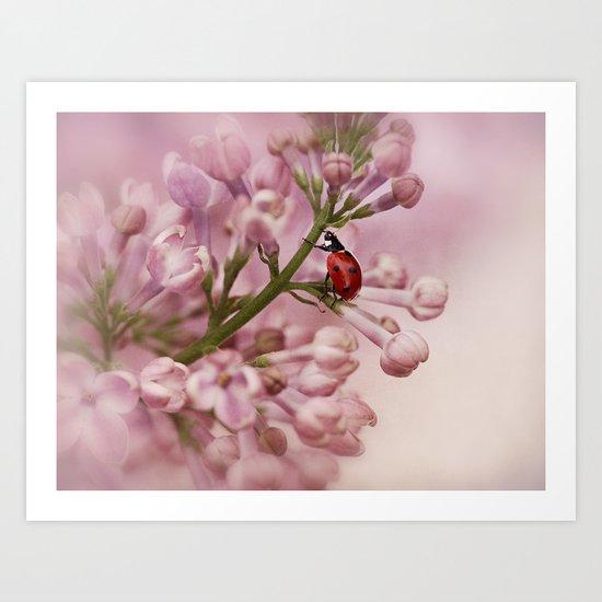Ladybird on Lilacs Art Print