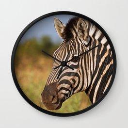 The Zebra, Africa wildlife Wall Clock