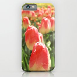 Tulip Heaven iPhone Case