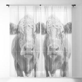Highland Cow Portrait | Animal Photography | Black and White | Art Print Minimalism | Farm Animal Sheer Curtain