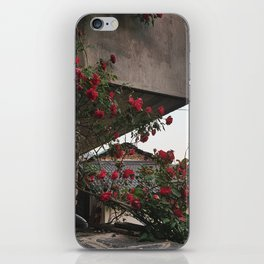 PHOTOGRAPHY - Corner roses iPhone Skin