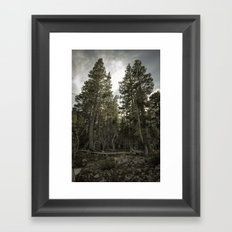 Monster Trees Framed Art Print