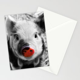 BW splash sweet piglet Stationery Cards
