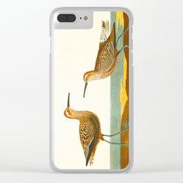Long-legged Sandpiper Bird Clear iPhone Case