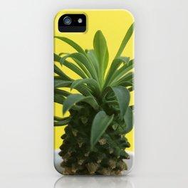 Euphorbia hypogaea(yellow) iPhone Case