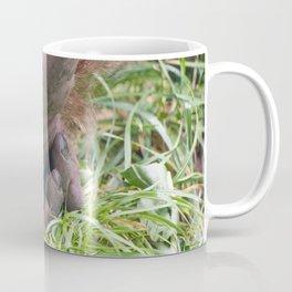 Tread Lightly Coffee Mug
