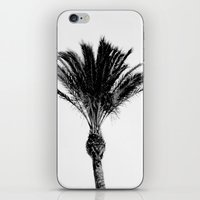 palm iPhone & iPod Skins featuring Palm  by Patricia de Cos