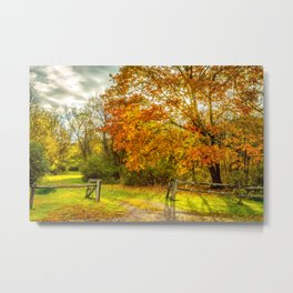 Autumn fence Metal Print