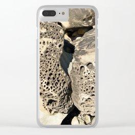 Stone Lace Wings Rock Boulder Washington Northwest Geology Geologist Sandstone Chuckanut Formation Clear iPhone Case