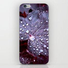night colors IX iPhone Skin