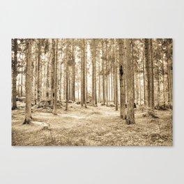 Tree Trunks III Canvas Print