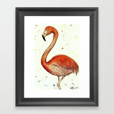 Colourful Flamingo  Framed Art Print
