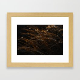 freezing rain on grass Framed Art Print