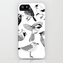 Birds of the Northeast iPhone Case