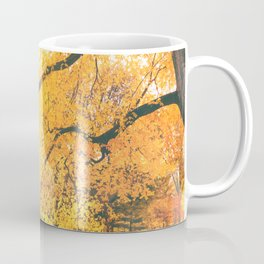 New York City Autumn Sun Coffee Mug