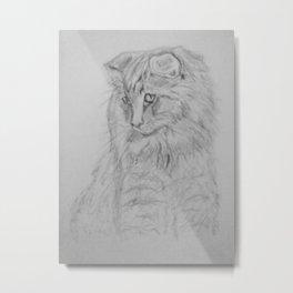 My Norwegian Forest Cat Metal Print