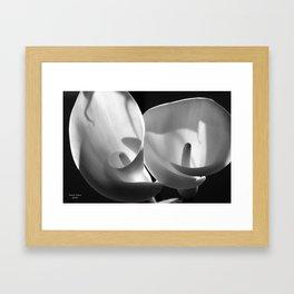 Spiral Beauty 4 Framed Art Print