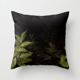 2017-09-22 Throw Pillow
