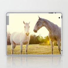 Two Horses Fine Art Photography Laptop & iPad Skin