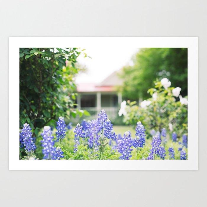 Brenham Bluebonnets - Brenham, Texas Art Print