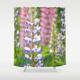 Lovely Lupines Shower Curtain