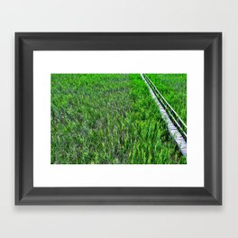 A sea of harmony Framed Art Print