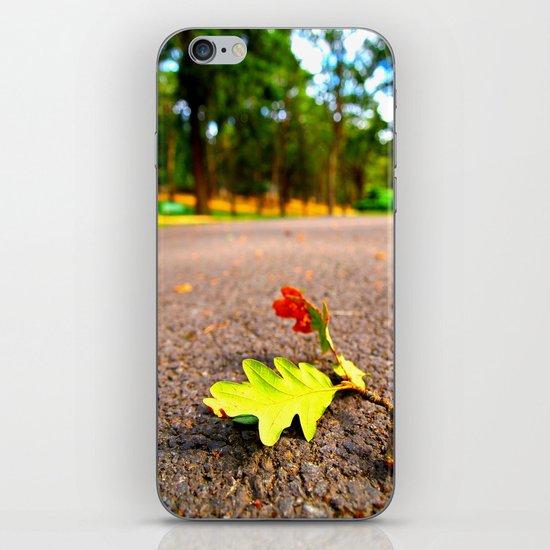 Beautiful Autumn  iPhone & iPod Skin